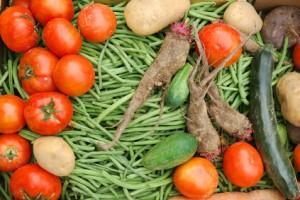Bio Kiste mit Gemüse