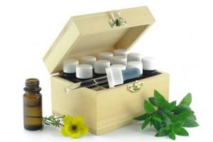 Tee aus Katzenkralle – die geheime Wirkung der südamerikanischen Heilpflanze